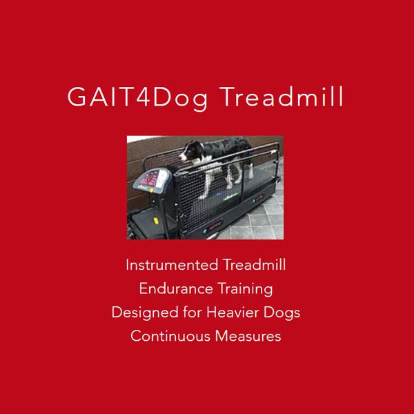 Gait4Dog Treadmill
