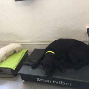 Smartviber